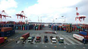 ▲ガントリークレーンが並ぶ博多港