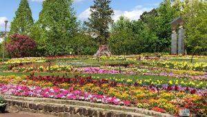 ▲施設内の美しい花畑